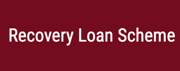 The Recovery Loan Scheme